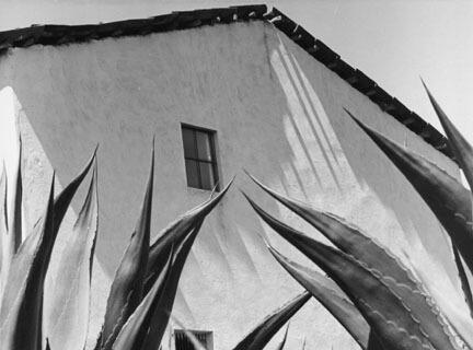 Manuel Alvarez Bravo, Ventana a los magueyes (Window on the agaves), 1976