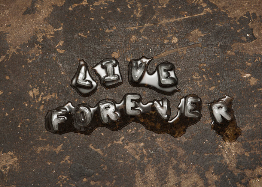 Tim Etchells, Live Forever, 2011 Image Courtesy of the Artist