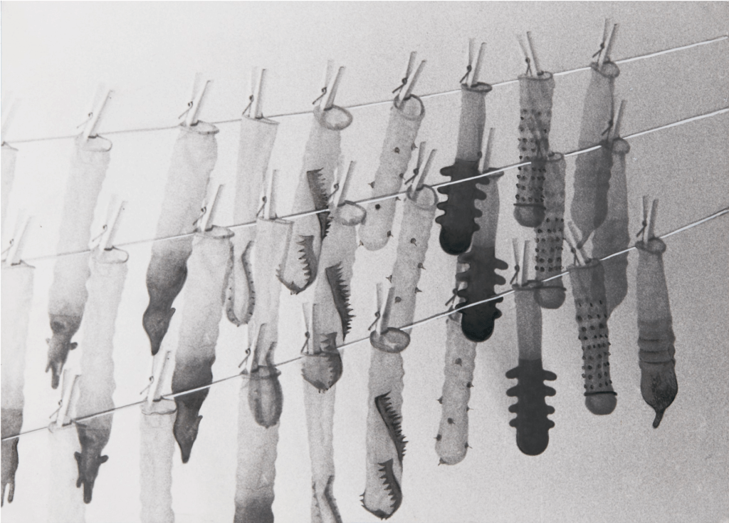 Renate Bertlmann, Waschtag (Washing Day), 1976