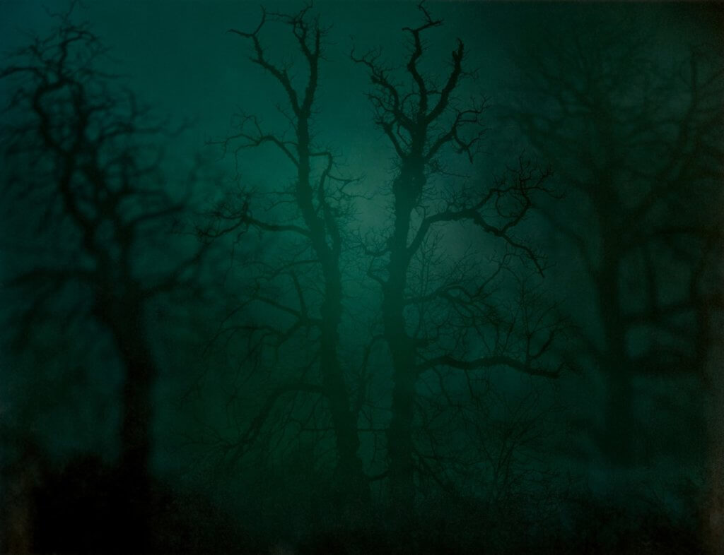Nicholas Hughes, In Darkness Visible (Verse I), no 14, 2007 Photography, Landscape